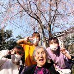 春輝の名所は玄関脇🌸満開!枝垂れ桜!!